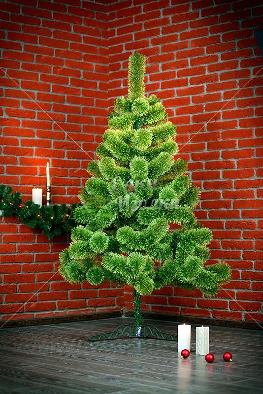купить елки